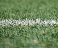Latest , Aspiring  Usage For Professional Tennis Stadium Disclosed